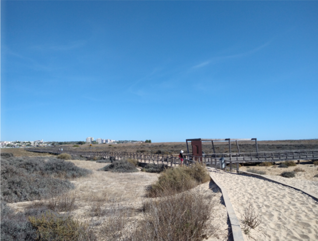 picture showing the boardwalk trough Alvor Nature Reserve
