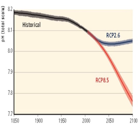 Graph showing pH levels with 2 IPCC scenarios (RCP2.6 and RCP8.5)